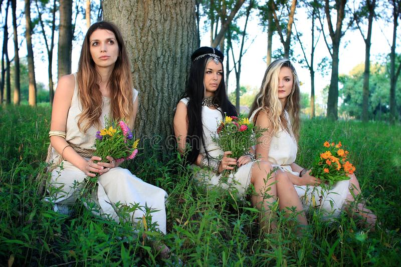 Morning photo session in the forest with three pagan women royalty free stock image