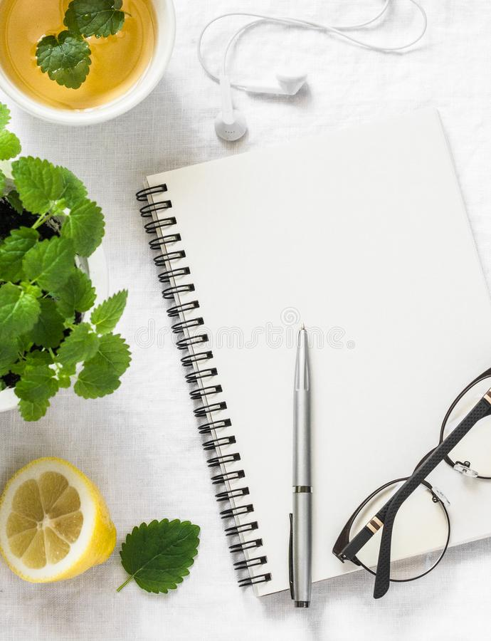 Morning planning inspiration and melissa lemon green tea. Blank notepad, cup of tea, melissa flower pot on a white background, top. View. Flat lay royalty free stock images