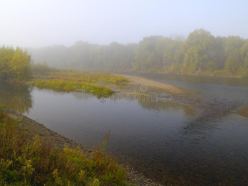 Morning river mist royalty free stock images