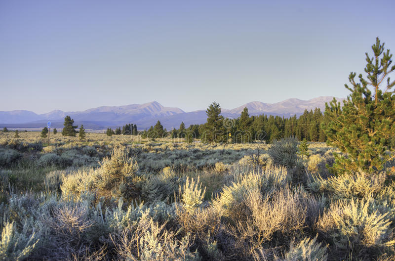 Morning in the Rockies stock photography