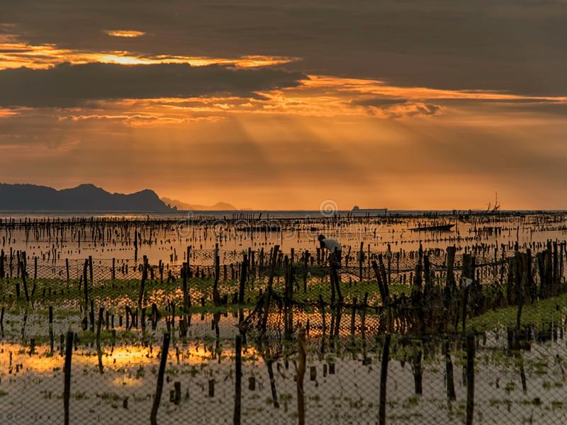 Morning Scenery at Eastern Coast of Nusa Penida royalty free stock photos