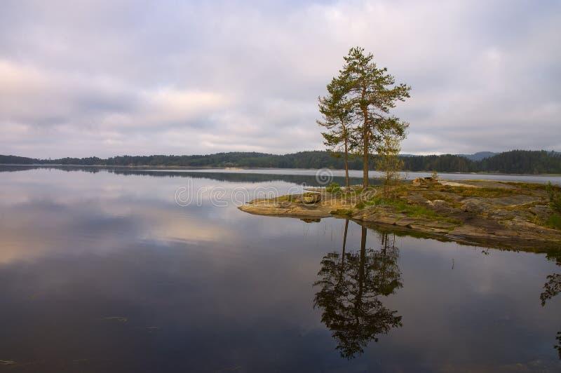 Morning See in Norwegen. lizenzfreies stockfoto