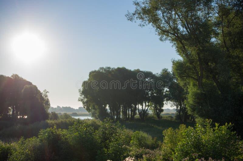 Morning shore stock photography