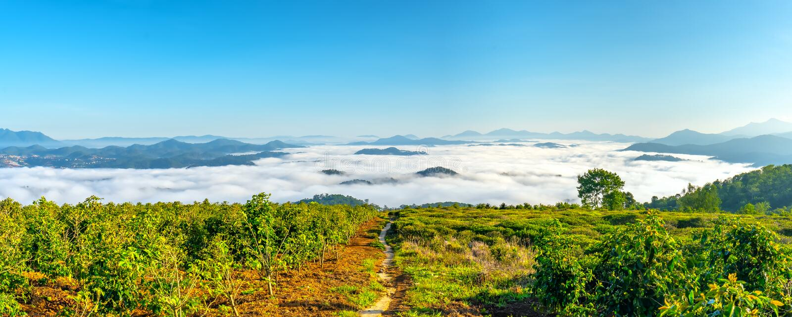 Morning in small town on the plateau fog covered houses royalty free stock images