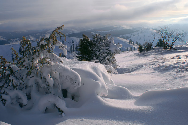 Morning snowscape royalty free stock photos