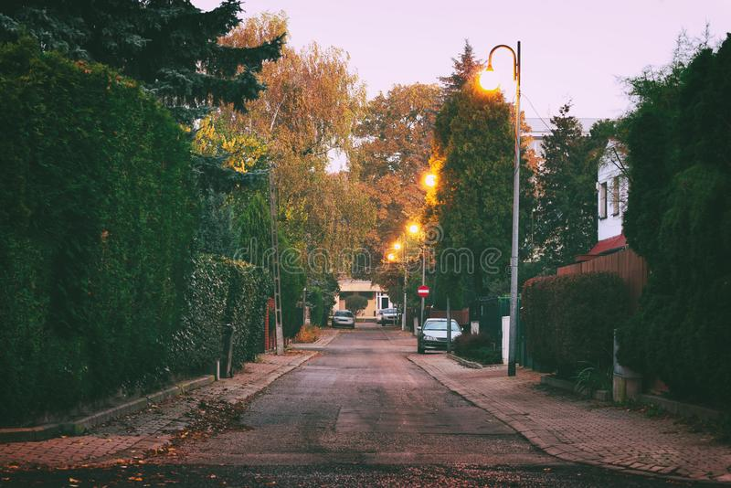 Morning street in autumn. Morning street with green bushes, yellow trees and bright lights. Long narrow road through the private residential area. Autumn in the stock photos