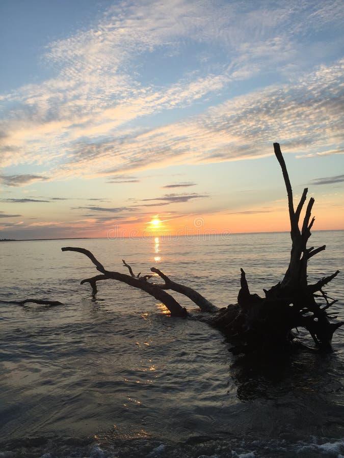 The morning sun stock photos