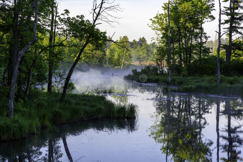 Morning sun and mist over a swamp in the Adirondacks New York royalty free stock images