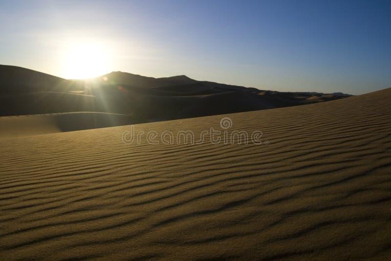 Morning Sunlight In The Desert Royalty Free Stock Images