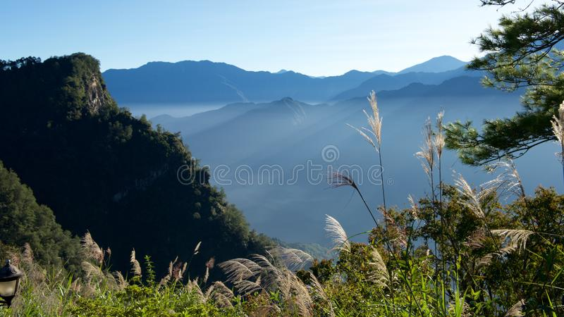 Morning and sunlight. In an ordinary morning, the sunlight fills the entire hill, Alishan, Taiwan, China stock photo