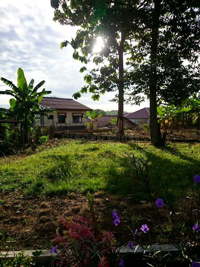 Morning sunrise at village. Backyard of house stock image