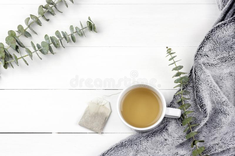 Morning tea cup with Eucalyptus Silver Dollar plant leaves on white wood panel background royalty free stock photography
