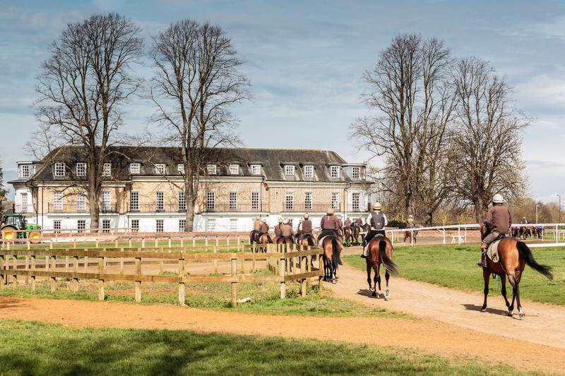 Morning Training Jockeys & Racehorse Returning to HQ Stable`s stock photo