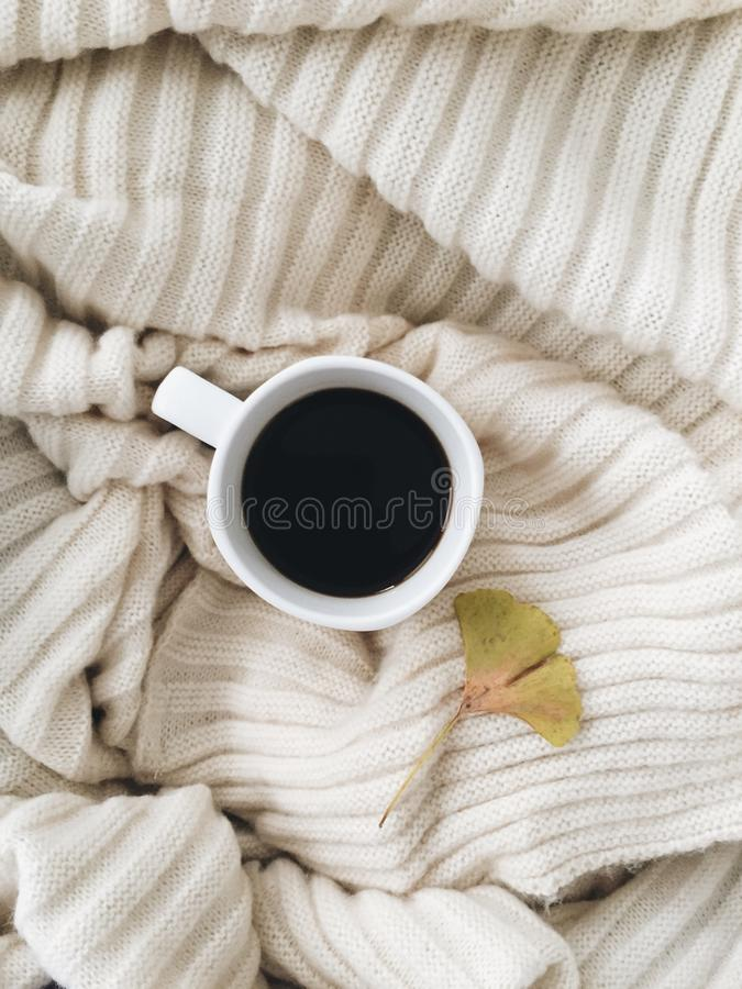 Morning vibes royalty free stock photography