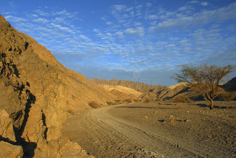 Morning View On The Negev Desert, Israel Stock Image