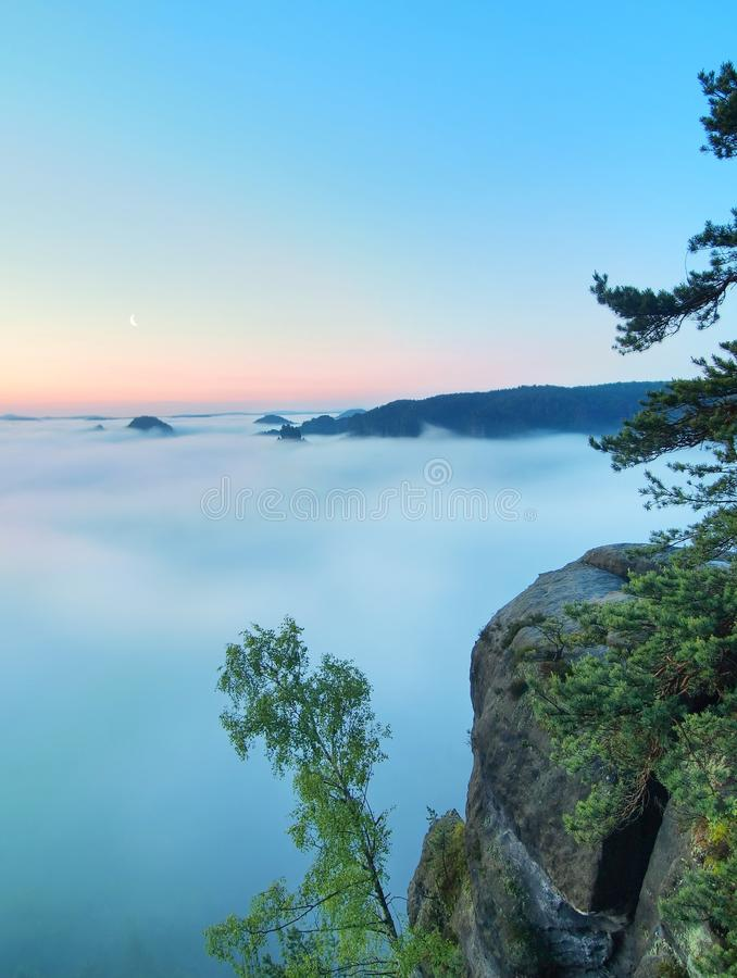 Morning view over rock and fresh green trees to deep valley full of light blue mist. Dreamy spring landscape within daybreak. After rainy night. Blue pink sky stock photos
