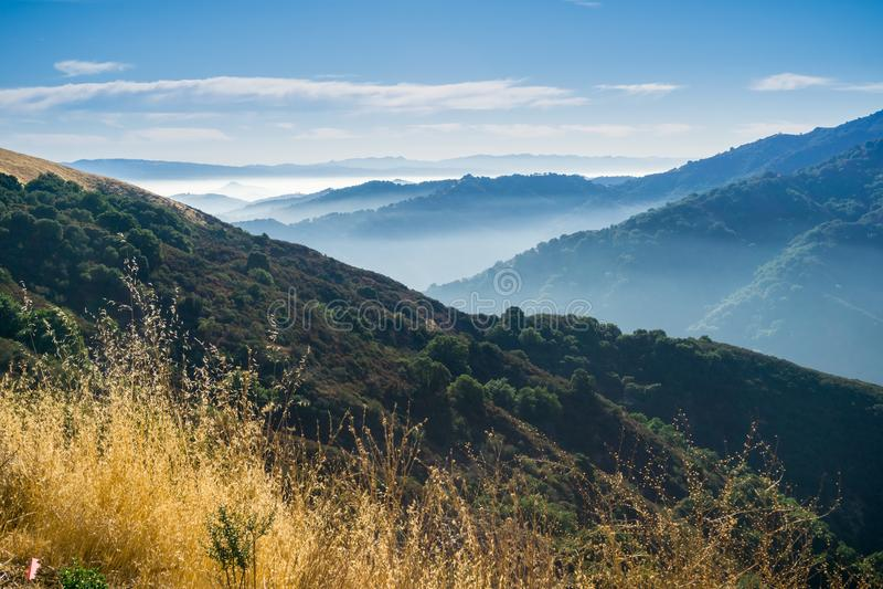 Sunny morning with lingering fog; Santa Cruz mountains, San Francisco bay area royalty free stock images