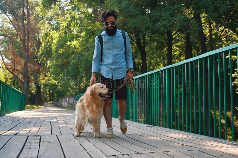 Morning walk with dog. Young man with his labrador retriever on the wood bridge with trees and sun light in background stock photography