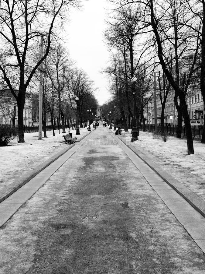 Morning walk. Photo of a park in the center of Moscow stock photography