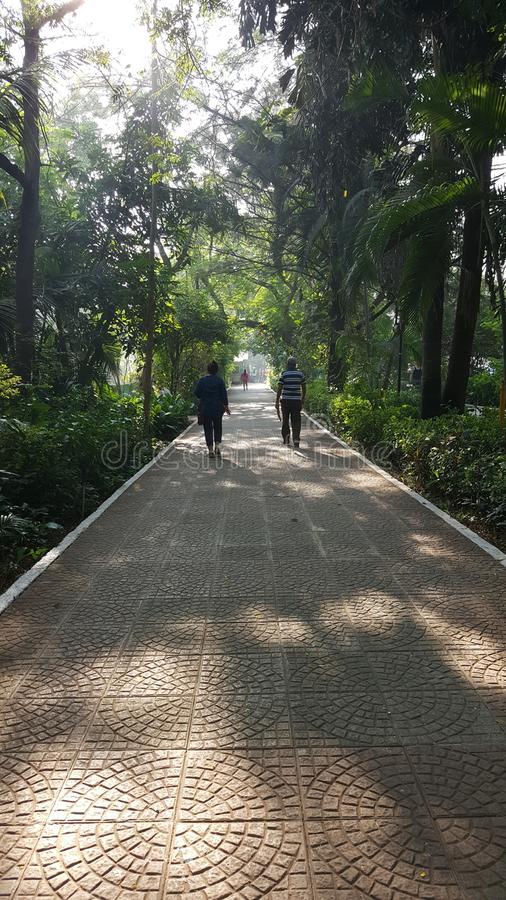 Morning walk track with tiled path. People do morning walk on a sun lit walking track in neighborhood garden lined up with tree stock image