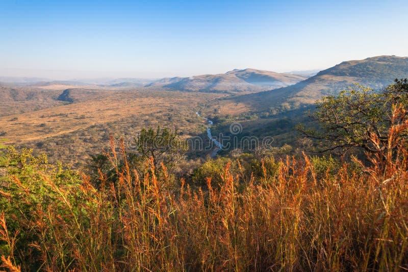 Morning Wildlife Terrain Landscape