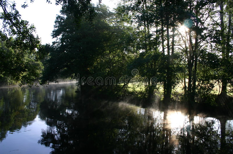 Download Morningstream3 immagine stock. Immagine di mattina, pesca - 125731
