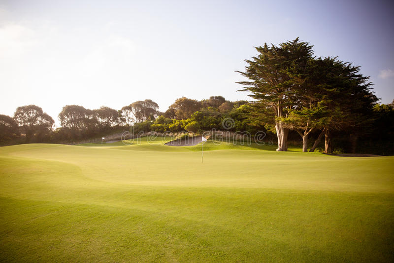 Mornington Peninsula Golf Course. A golf course on the Mornington Peninsula on a summer`s evening in Victoria, Australia royalty free stock photos