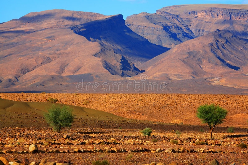 Moroccan landscape royalty free stock photo