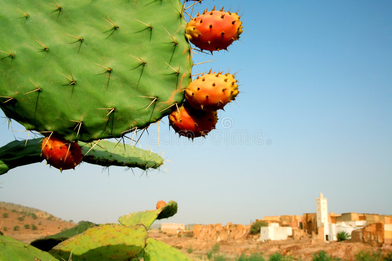Moroccan landscape stock photography