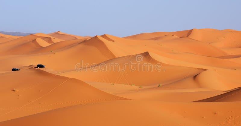 morocco Dynridning i den Sahara öknen arkivfoton