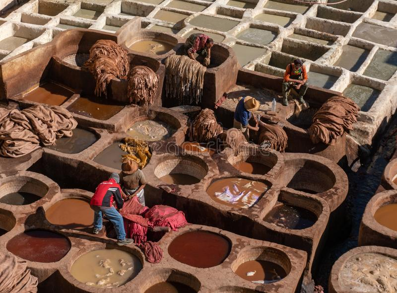 MOROCCO, FEX - January 2019: Man working in Chouara tannery in old medina in Fes, a traditional and old tannery with royalty free stock photography
