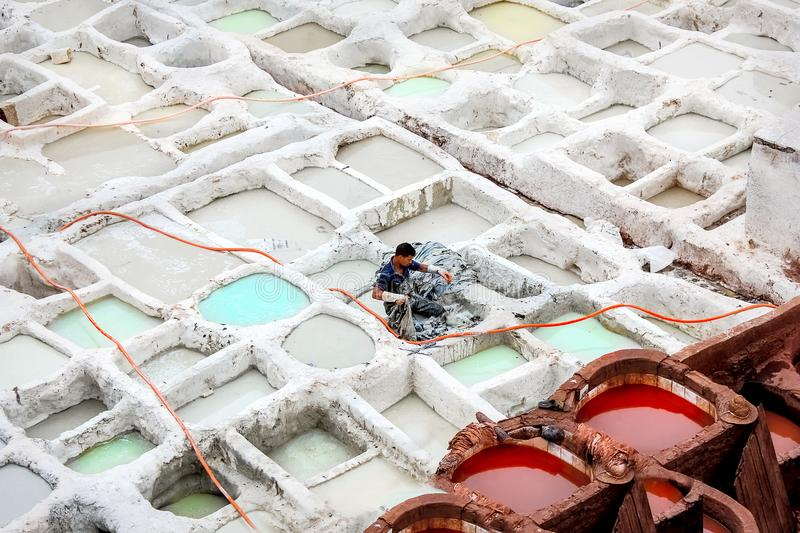 Morocco, Fez, the old city - September 15, 2014: Worker paint the skin in dyers.  royalty free stock photo