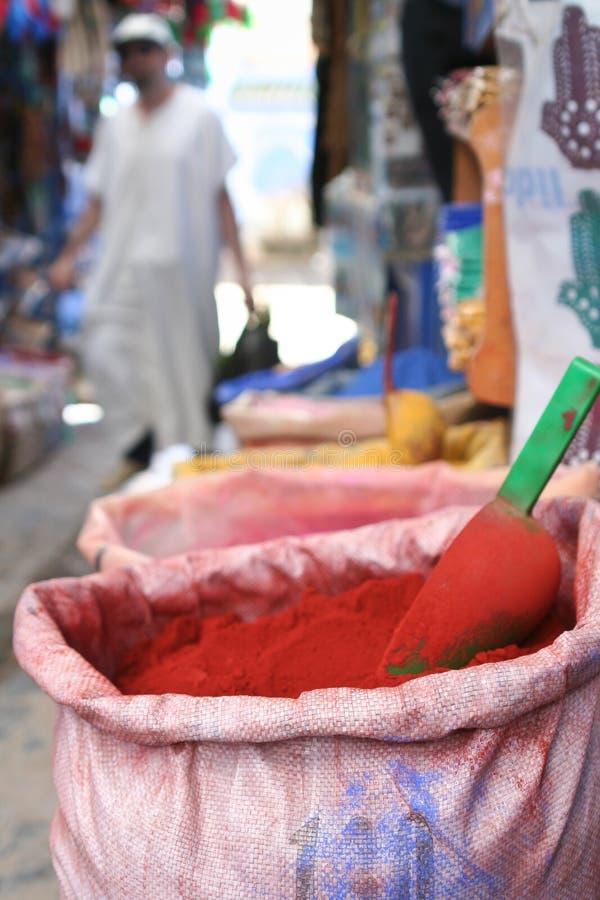 morocco kryddor arkivbild