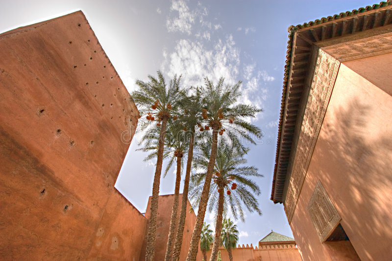 Download Morocco palm trees stock photo. Image of outdoors, architecture - 3724542