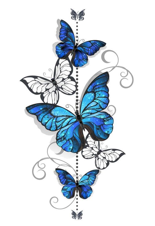 Morpho azul y mariposa blanca ilustración del vector