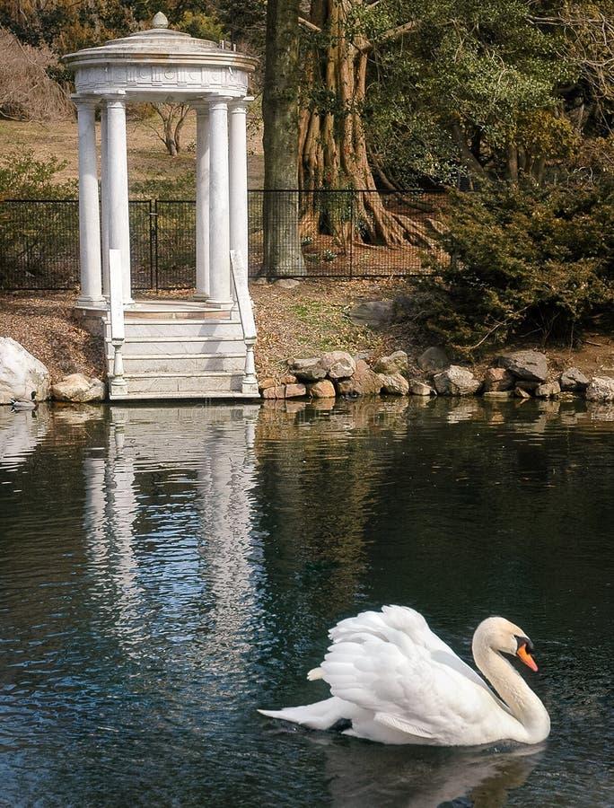 Morris Arboretum royalty-vrije stock afbeeldingen