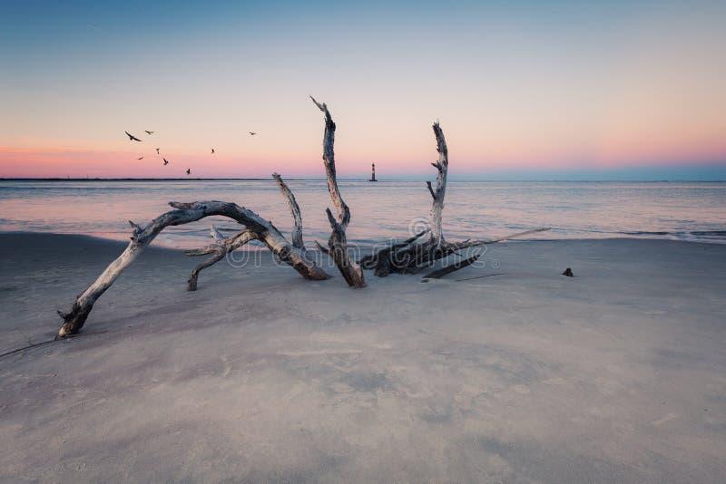 Morris Island Lighthouse en la puesta del sol fotografía de archivo libre de regalías