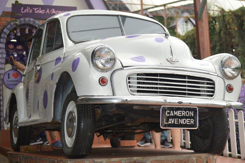 Morris Mini Car en la exhibición fotos de archivo
