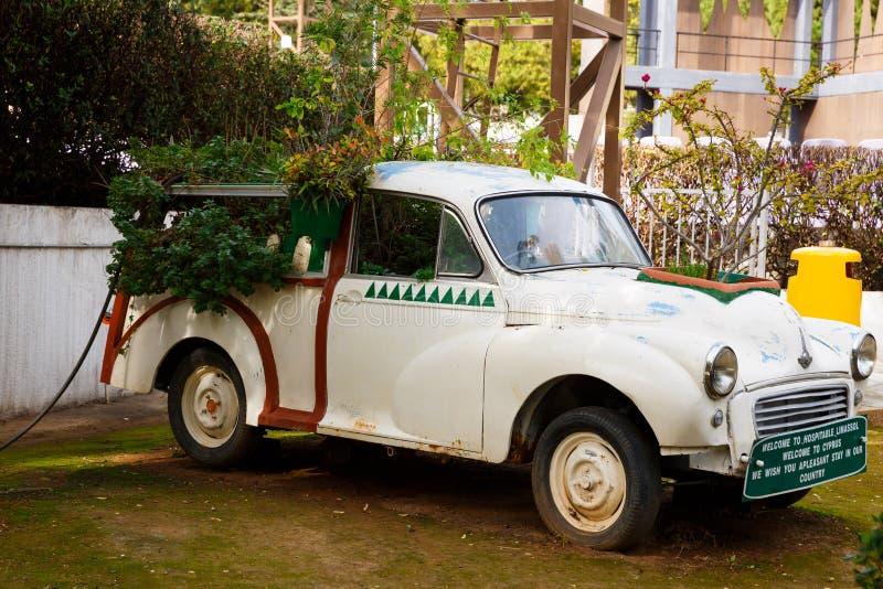 Morris Mniejszościowy samochód z roślinami zdjęcie royalty free