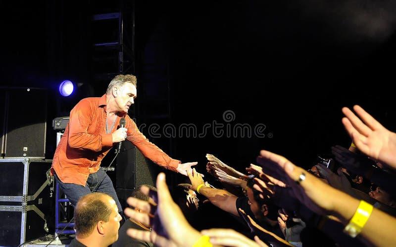 Morrissey στοκ φωτογραφίες