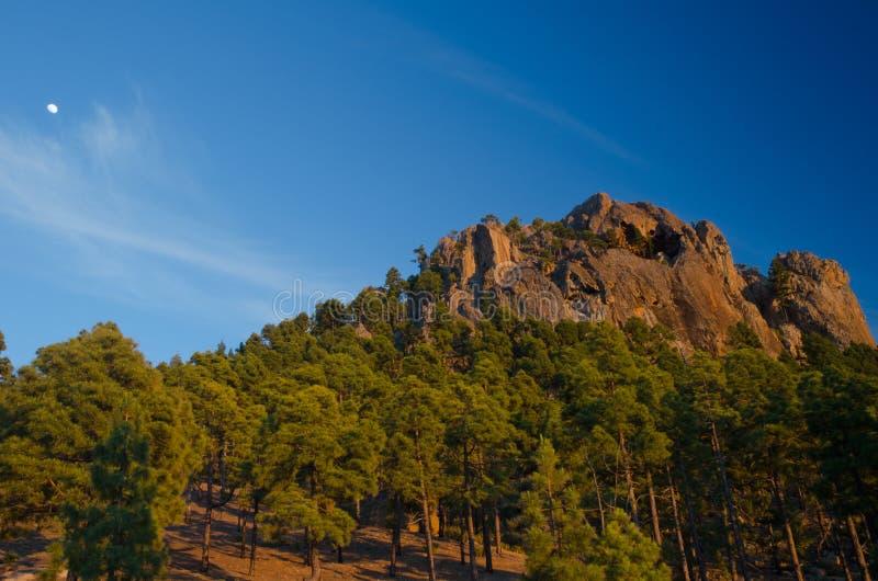 Morro de Pajonales. Pajonales. Integral Natural Reserve of Inagua. Gran Canaria. Canary Islands. Spain stock photos