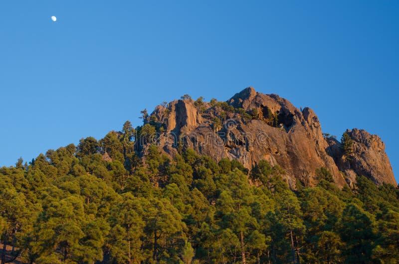 Morro de Pajonales. Pajonales. Integral Natural Reserve of Inagua. Gran Canaria. Canary Islands. Spain stock photo