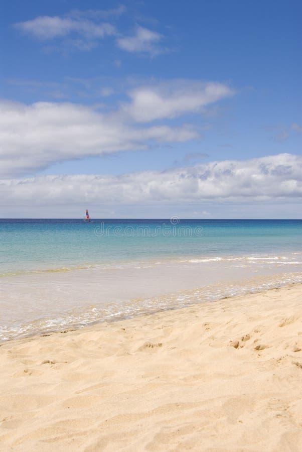 Download Morro Jable Beach stock photo. Image of sailing, beautiful - 5190906