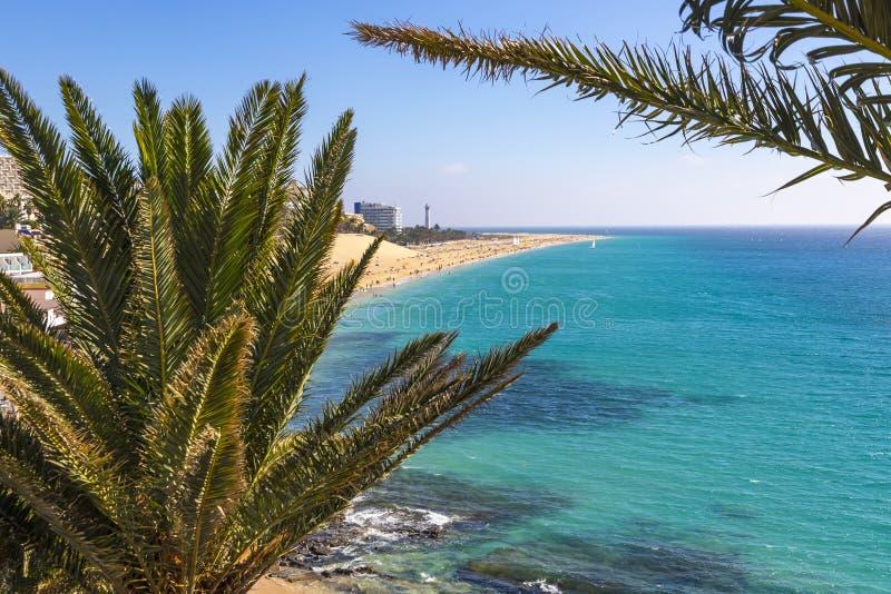Morro Jable strand, Fuerteventura ö, kanariefågelöar, Spanien arkivbild