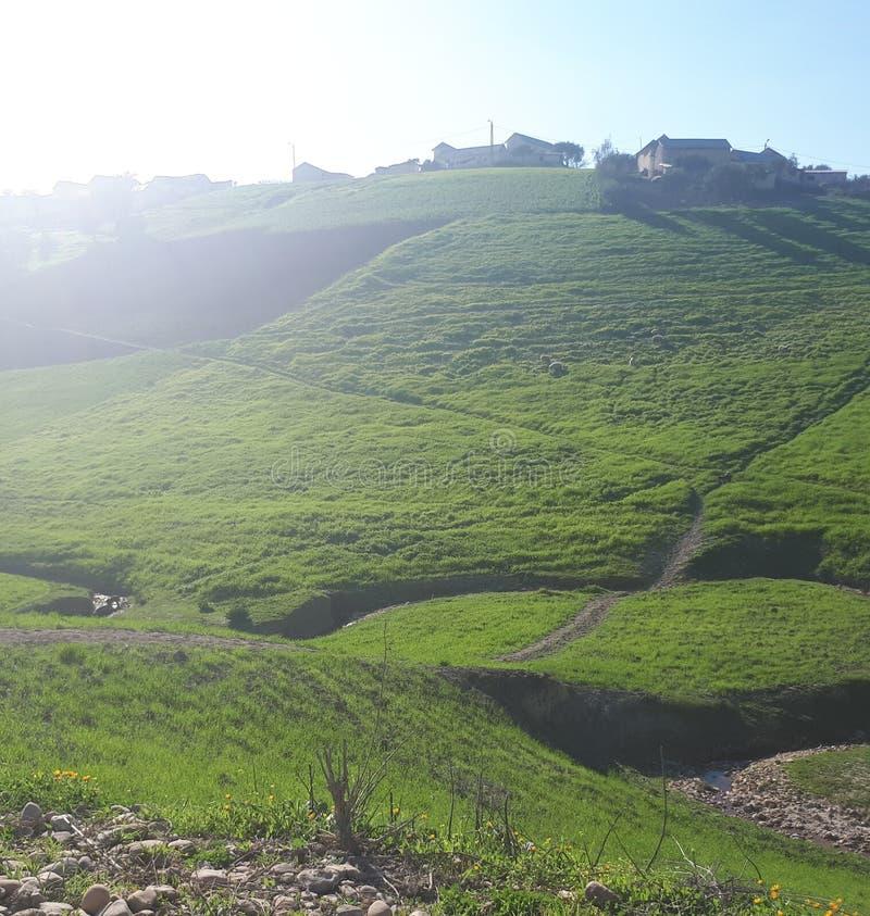 Morrocan paysage royaltyfria foton
