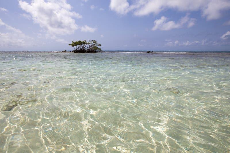 Morrocoy Nationaal park, een paradijs met kokospalmen, wit San royalty-vrije stock fotografie