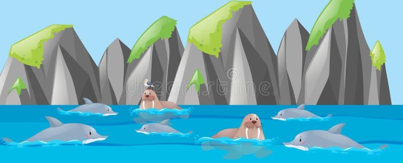 Mors i delfin w morzu royalty ilustracja