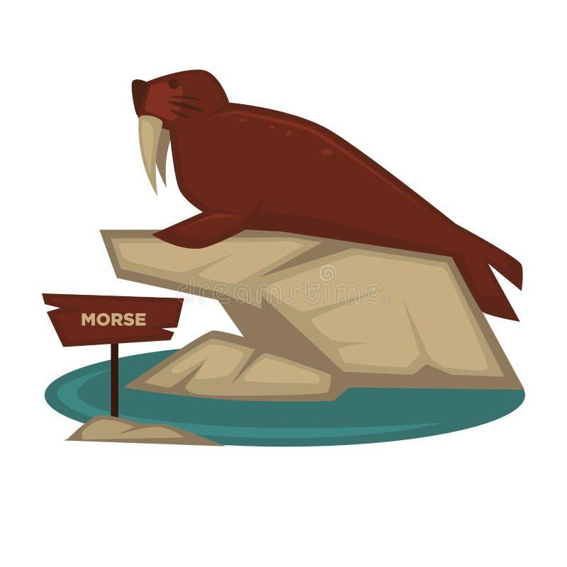 Morse-Zootier und hölzernes Schild vector Karikaturikone für zoologischen Park vektor abbildung
