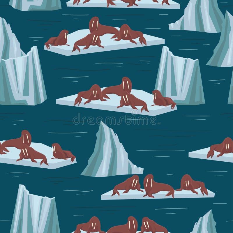 Morses sur des banquises et des icebergs Modèle sans couture pour les tissus et le papier de empaquetage Dessins de vecteur illustration de vecteur