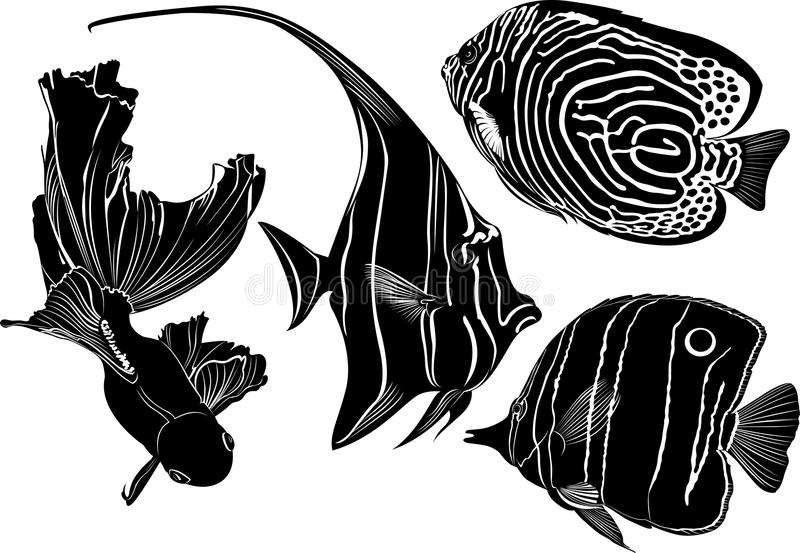 Morska akwarium ryba ilustracja wektor